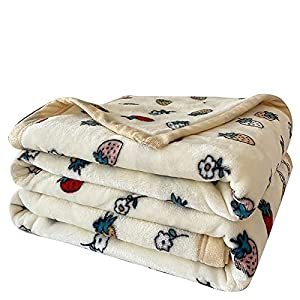HGSWYUD Fluffy Flannel Blankets Soft Warm Bed Throws for Sofa, Bed, Settees and Couch, Fit All Season, No Shedding- Decorative, Lightweight, Soft and Warm Fresa crema-M-120 * 200 cm