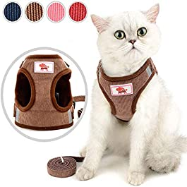 Dog Lead Cat Harness And Leash Adjustable Dog Harness Dog Vest Harness Cat Harness With Lead Puppy Harness For Small Dogs Dog Harness And Lead Sets