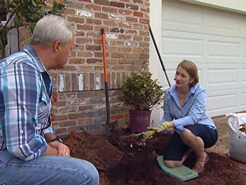 Fall Around the Yard: Lawn & Garden Tips