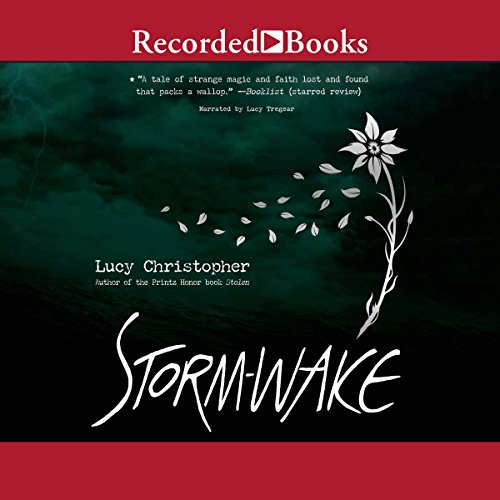 Storm-Wake audiobook cover art