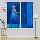 Frozen 2 Elsa Blackout Curtain Panels,Blackout Thermal Insulated Liner Keep Warm Draperies for Living Room Bedroom W55' x L63'