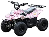 110cc ATV Four Wheelers Fully Automatic 4 Stroke Engine 6 Inch Tires Quads for Kids - PRETTY PINK SPIDER