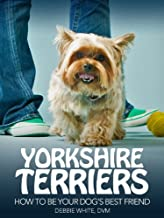 Best yorkshire terrier 101 Reviews