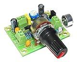 arlikits ar172microfono amplificatore kit elektret regolabile verde