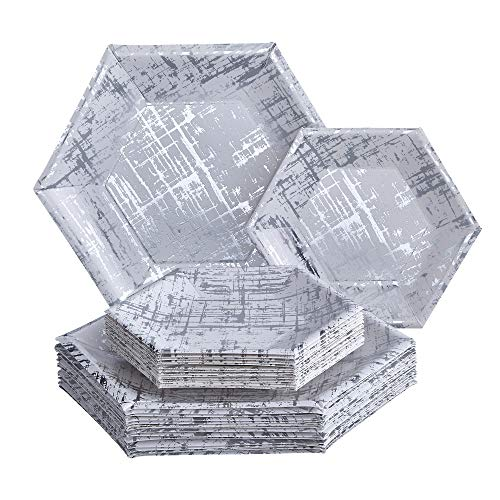 Silver Spoons Silver Vajilla Desechable para Fiestas de 36 Piezas Platos Grandes | 18 Pequeños Cartón Resistente | para Bodas y Cenas de Lujo (Colección Arctic, Paper, Plata