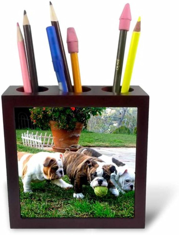 3dRosa PH 60013 _ 1 1 1 englischen Bulldoggen Play Ball-Tile Stifthalter, 12,7 cm B00Q6F7L1E   Abrechnungspreis  03299e
