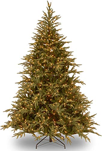 National Tree Company 'Feel Real' Pre-lit Artificial Christmas Tree | Includes Pre-strung Multi-Color LED Lights and Stand | Frasier Grande - 6 ft