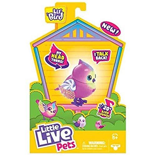 Little Live Pets Lil' Bird– Tweeterina -Einzelpackung mit Bird von Little Live Pets, Neuer, beweglicher Kopf, über 20 Vogelgeräusche, reagiert auf Berührungen