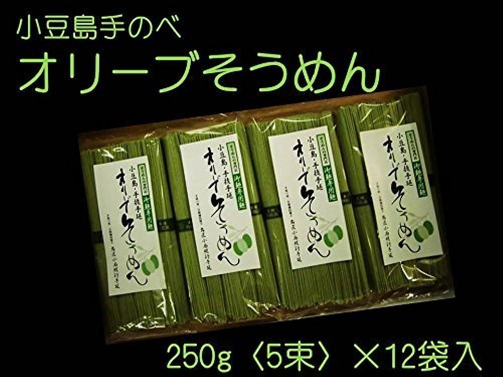 投票政治的特徴づける小豆島オリーブ素麺セット(50g×5束×12袋)