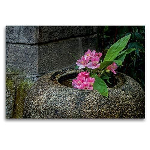 CALVENDO Premium Textil-Leinwand 120 x 80 cm Quer-Format Blüten in Einer Steinvase im Nishiki Tempel, Kyoto, Leinwanddruck von Lidschlag