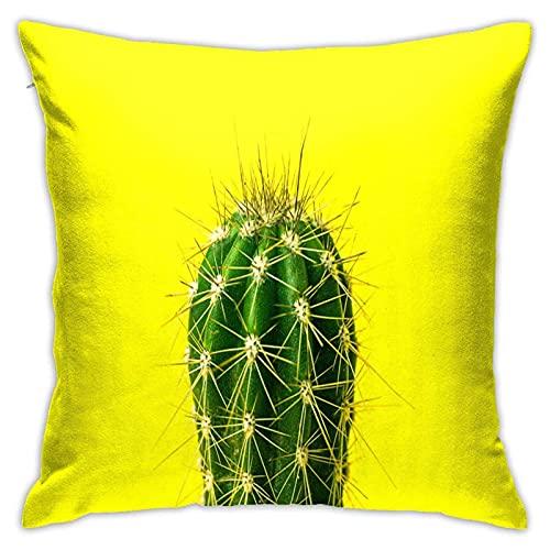 CHISHANG Lost Cactus Kissenbezüge 18x18 Modern Sofa Dekokissen Cover, Dekorative Outdoon Stoff Kissenbezug für Couch Bett Auto