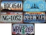 - Lot de 5 PLAQUES D' IMMATRICULATION de Voiture USA en métal, avec Effet Vieilli - répliques de Vraies plaques américaines (Old1)
