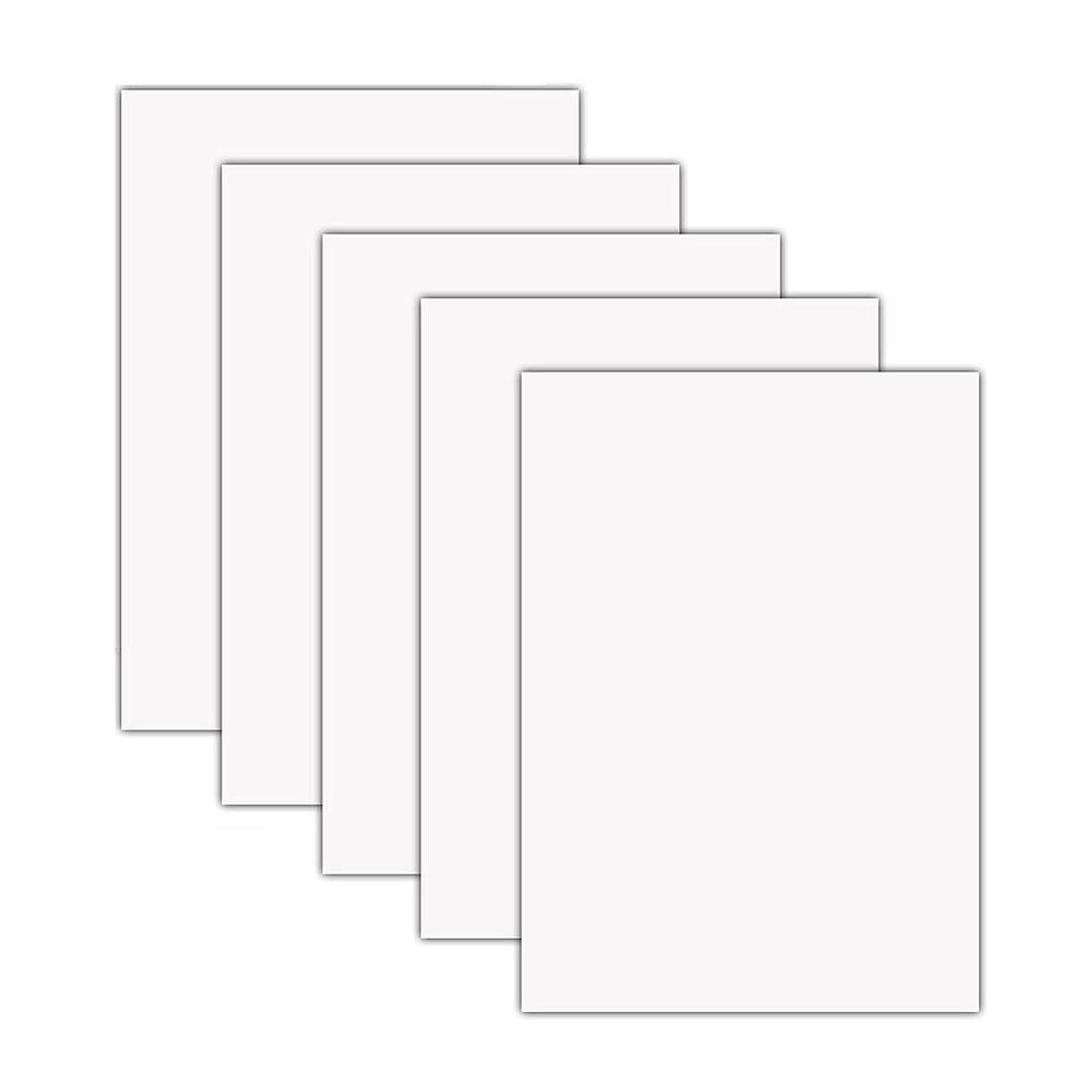 おっと普通に凶暴な5枚セット 熱転写シート 紙 アイロンプリントシート ラバーシート Tシャツや他の衣類などに使う 38cm×30cm (ホワイト(白))