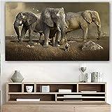 ganlanshu Cartel Lienzo Pintura Animal Elefante Pared Arte Imagen de la Pared para Sala de Estar decoración del hogar Pintura sin Marco 70cmx122cm
