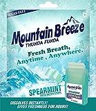 Mountain Breeze Sugar-Free Spearmint Fresh Breath Strips ( 18 Strips ) Pack of 12