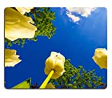Yellow Tulips Facing the Sky blue white clouds outdoors Mouse Pads Customized Made to Order Support Ready 9 7/8 Inch (250mm) X 7 7/8 Inch (200mm) X 1/16 Inch (2mm) Eco Friendly Cloth with Neoprene Rubber Liil Mouse Pad Desktop Mousepad Laptop Mousepads Comfortable Computer Mouse Mat Cute Gaming Mouse_pad