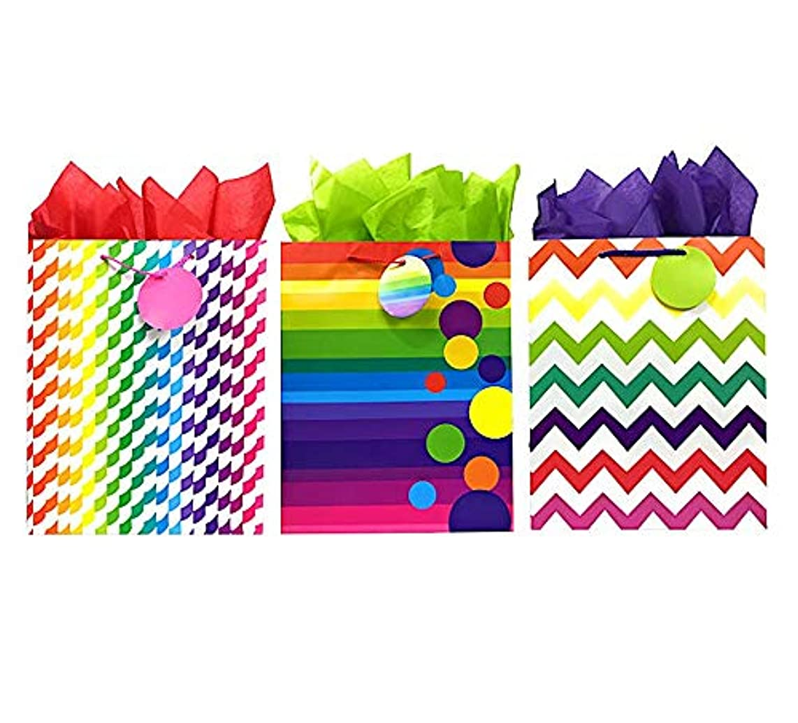 Rainbow Gift Bags + Tissue Paper, 3 Large Bags + Tissue Paper, Colorful All-Occasion