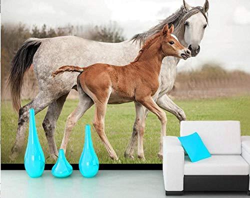 Fototapete / Fototapete mit Pferdemotiv, Motiv: zwei Tiere, für Wohnzimmer, Sofa, TV, Wand, Schlafzimmer, Dekoration, Bar, 350*245cm