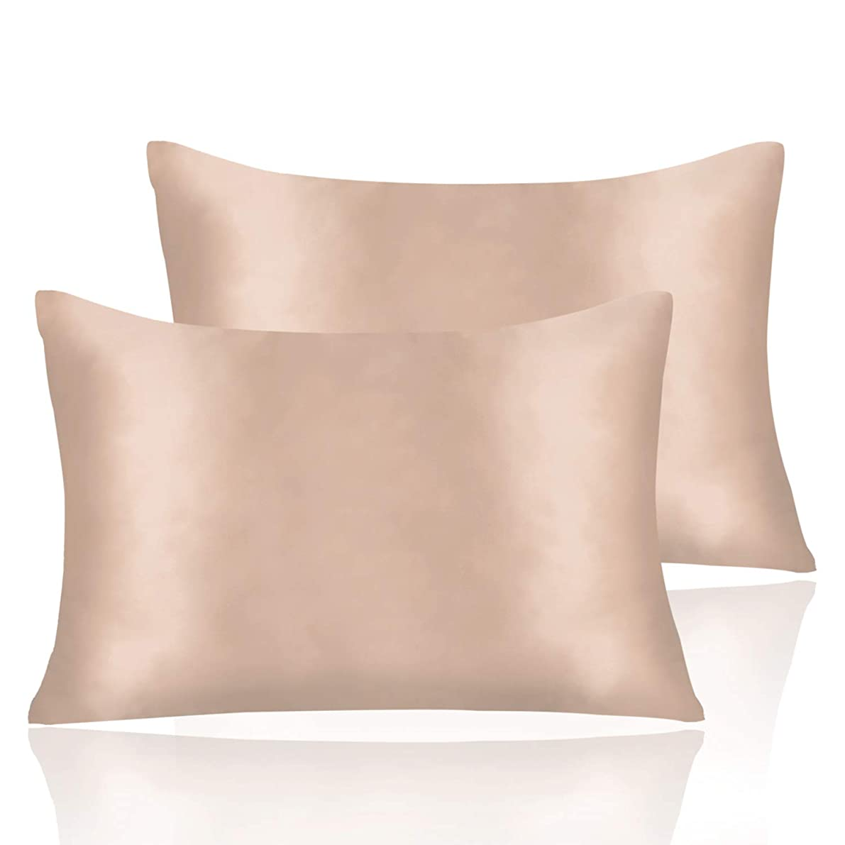 2 Pieces Satin Pillowcases Set for Hair and Skin Hypoallergenic Silky Feel Soft and Cozy Pillowcase Easy to Wash Envelope Closure (Champagne, 20