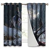 SSKJTC Blackout Draperies Window Curtain Panels Game of Thrones Daenerys Targaryen Jorah Mormont Holiday Decor W55xL39 Inch