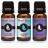 Trio (3) - Lavender Chamomile, Lavender Breeze & Lavender - Premium Fragrance Oil Trio - 10ML