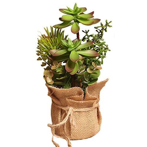 drawihi flores en maceta artificial plantas suculentas carnosas Cactus decoración del hogar..., verde y rojo, 25*14cm
