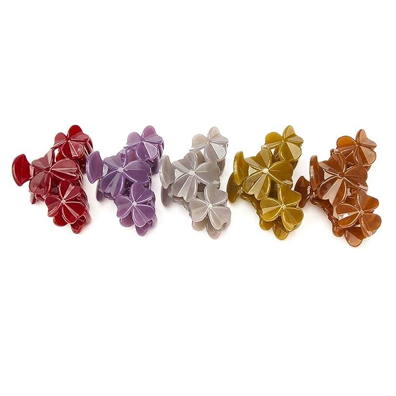 仮定柱成り立つLURROSE 5ピース髪爪アクリルキャンディーカラー小さなクローバー装飾ヘアジョークリップ爪ピンバレット - 大きいサイズ