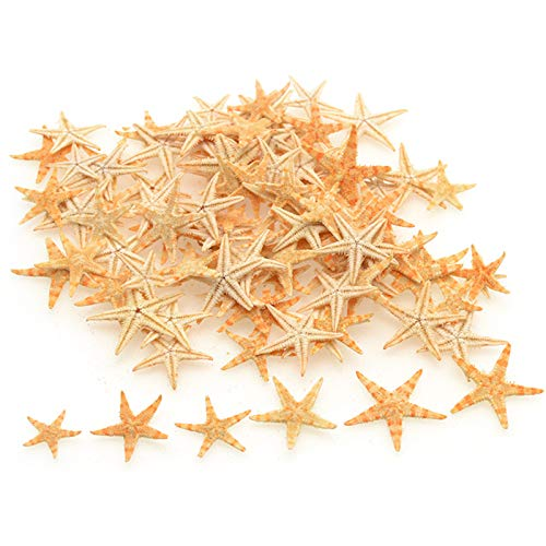 TIHOOD 90PCS 0.4'-1.2' Small Starfish Star Sea Shell Beach Crafts Decor (Yellow)