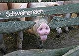 Schweinereien (Wandkalender 2020 DIN A3 quer)