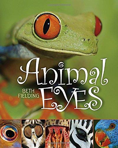 Animal Eyes PDF Books