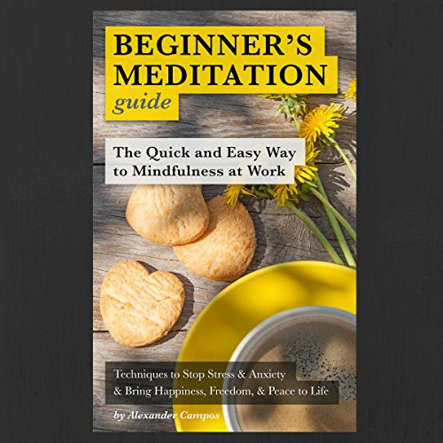 Beginner's Meditation Guide: The Quick and Easy Way to Mindfulness at Work cover art