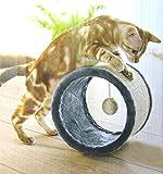 Katzen KRATZROLLE mit Spielball Katzenrolle Spielrolle Sisal ~cf953