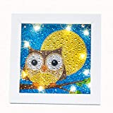 XINGZU Diamond Painting Kit for Kids with LED...