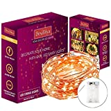 DesiDiya® 3AA Battery Operated Copper String Decorative Fairy Lights Diwali Christmas Festival LED Fairy Lights (Warm White,30 LED\s 3 Meters-Pack of 1)