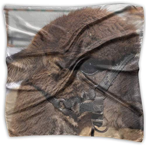 Wild Hair Alpacas Mujeres 'S Impreso Pañuelo Cuadrado Tocado Cuello Bufandas De Satén Abrigo Pañuelo...