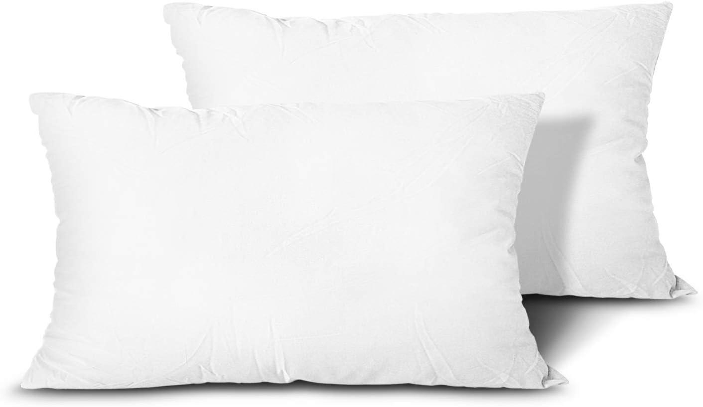 Edow Throw Pillow Inserts Choice Set Alternative lowest price 2 Lightweight Down of