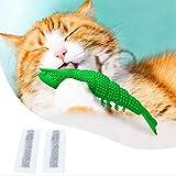 Katzenspielzeug Catnip Fische beißen Zahnen-Stick Risible Pet Zahnbürste Spielzeug, saubere Zähne und haltbarer Huangchuxin