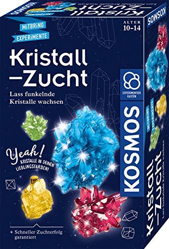 Kosmos 657840 Kristall-Zucht Experimentierset