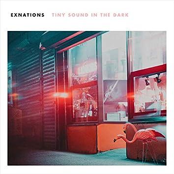 Tiny Sound in the Dark