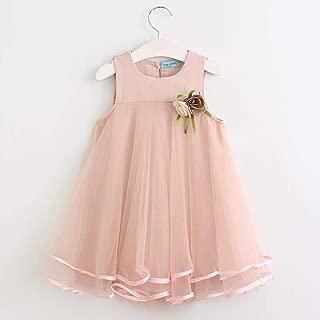 Girls Dress New Summer Mesh Girls Clothes Pink Applique Princess Dress Children Summer Clothes Baby Girls Dress