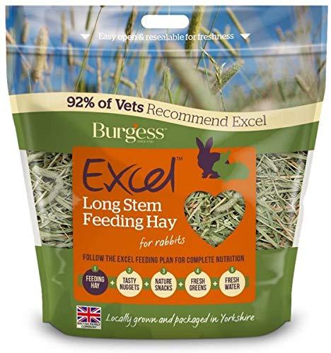 PET-308462 - Burgess Excel tallo largo Alimentación 1 kg de heno