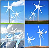 ZIWEIXING Wind Turbine Generator Unit 2400W 5 Blades DC 12V with Power Charge Controller,Hybrid Wind Turbine Generator,Turbine Wind Generator,Wind Generator Kit(White) (White)