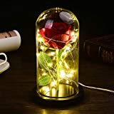 Beauty and The Beast Rose Kit Colorful Artificial Flower Rose Gift for Girl with Led Light in Glass Dome for Valentines Day Gifts Decor Forever Rose Lights Eternal Rose (Black)