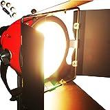 Kit de iluminación Continua Cabeza roja Foto del Estudio de vídeo Redhead de la lámpara de luz Tenue Construido en Earthed