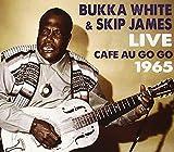 Live at the Cafe Au Go Go