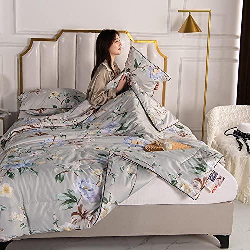 haoyunlai Edredón de Verano Ligero Fino Lavable Edredón de Verano Condición de Aire Duvet Soft Cozy Parrilter Quilting Home Textiles Apto para Adultos niños-Lirio de Perfume_150 * 200 cm