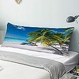Personalizado Funda de Almohada Larga,Palma de Coco en la Playa caribeña Cancún México,Funda de Almohada para el Cuerpo con Oculto Cremallera Cierre Decor del Hogar Sofá para Dormitorio,54' x 20'