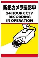 表示看板 「防犯カメラ撮影中」 反射加工なし 縦型 特小サイズ 20cm×30cm VH-094SS