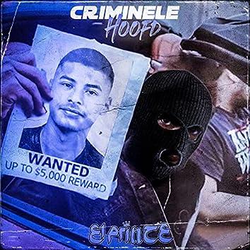 Criminele Hoofd