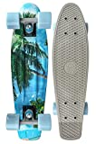 Long Island Longboards Cruiser Complete Buddy Sand 22.5' Complete